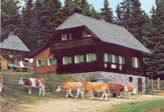 Kåltwiesen - Hütte
